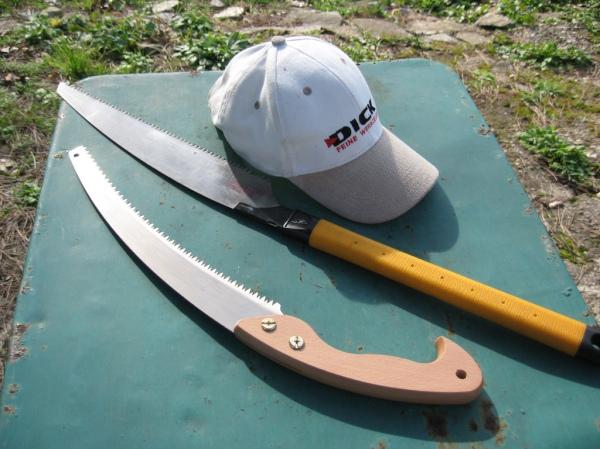 Scie japonaises de bûcheronnage et casquette Dick de travaux
