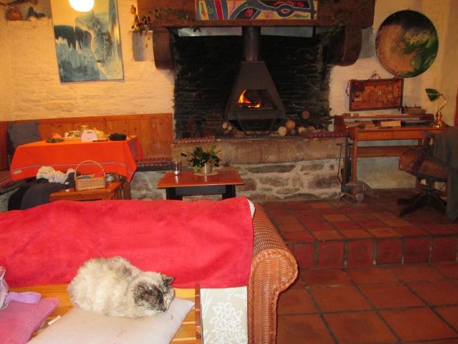 Coin du feu au chat dans le salon restauré. Noël 2014