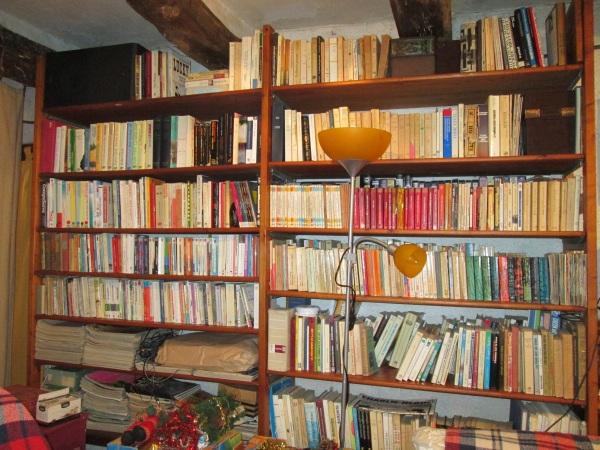 Une partie de la bibliothèque du salon. Automne 2014 © gaelle kermen