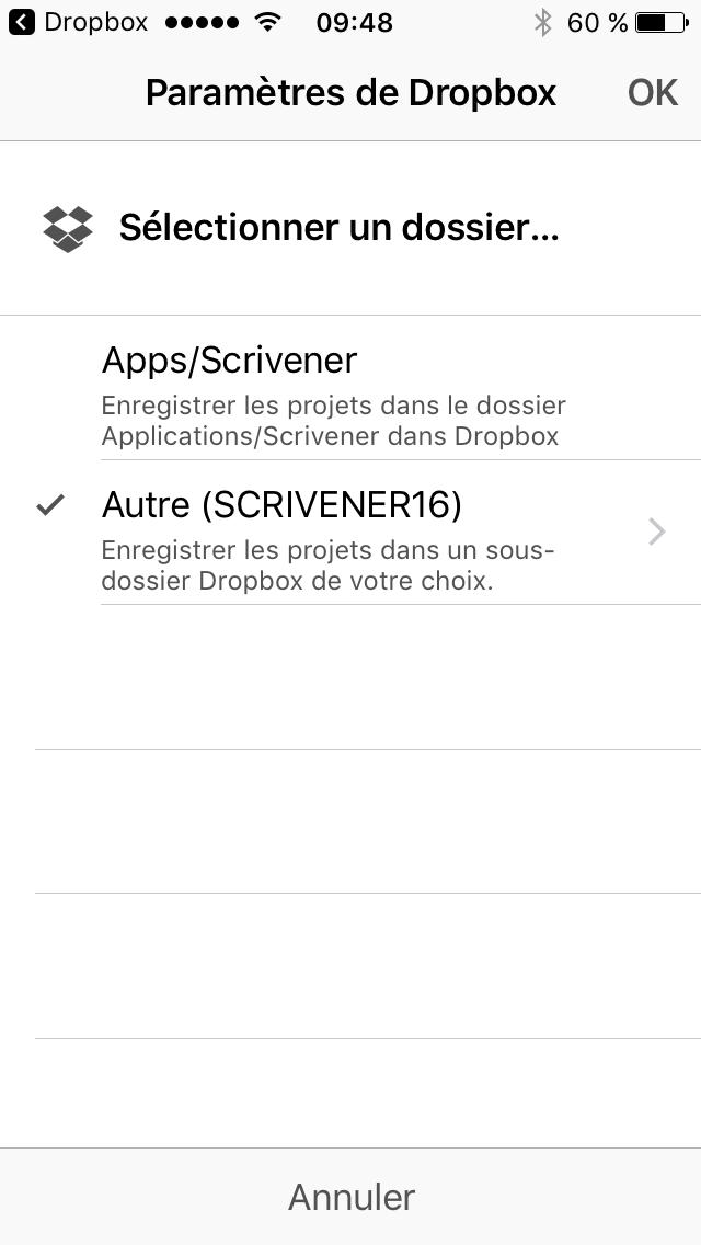 6-iOS_Dossier